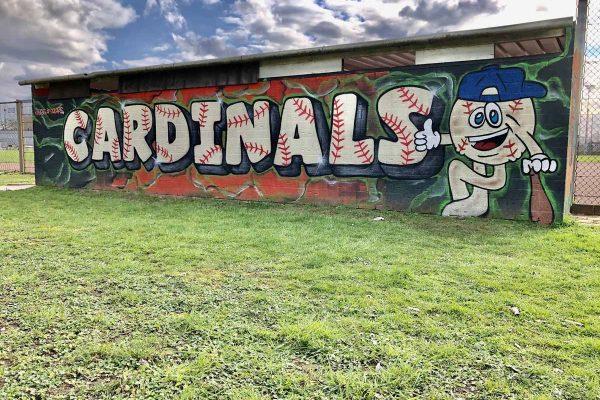 Cardinals Dugout away (2)