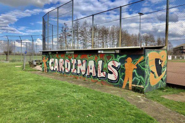 Cardinals Dugout home (1)