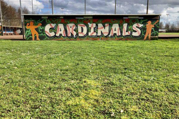 Cardinals Dugout home (2)