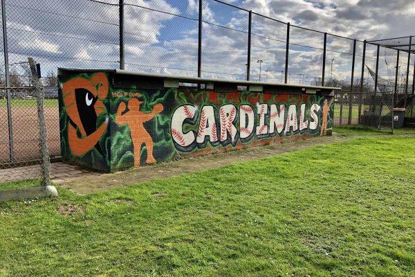 Cardinals Dugout home (3)